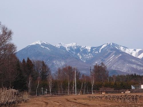 kobuchi-q.jpg